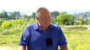 Doug Ford says next steps in Ontario's COVID-19 reopening plan to be announced within 3 weeks (01:23)