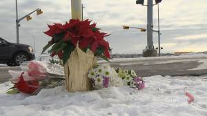 Fatal Calgary collision happened after police tried to do a traffic stop: ASIRT (01:44)