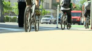 Bike lane project approved for Saskatoon neighbourhood (01:13)
