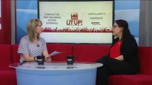 Spotlighting literacy with READ Saskatoon's Lit Up event