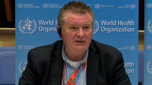 Coronavirus outbreak: WHO praises international efforts to share COVID-19 data