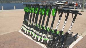 Kelowna's top orthopedic surgeon continues to warn people about E-scooter safety (02:03)