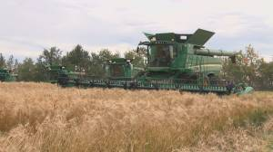 Alberta group of farmers share the harvest beyond Canada