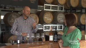 A tour of Rolling Grape Winery in Bailieboro