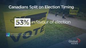 Canadians split on whether election should be held during COVID-19 pandemic: Ipsos poll (00:24)