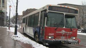 Saint John Transit to undergo 'fundamental review'