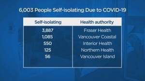 Geographical breakdown of the more than 6,000 people in B.C. in self-isolation. (01:16)