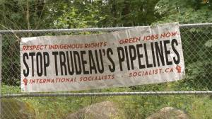Environmentalists still fighting Trans Mountain pipeline expansion