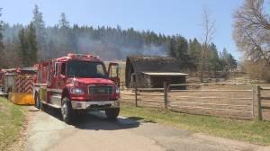 Wind-driven flames send fire into fields near Lavington (00:31)