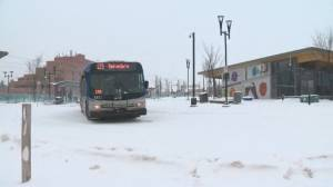 Edmonton Transit fare changes take effect in February