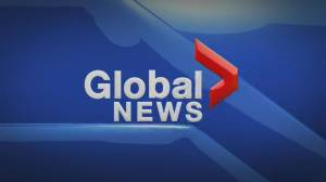 Global News at Noon Edmonton: March 23