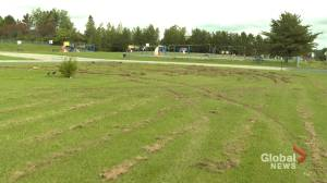 New Brunswick students stepping up to repair damage caused by vandals (02:03)
