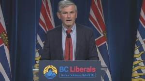BC Liberal Leader steps down after election loss (04:45)