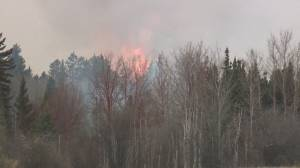 How does Alberta's wildfire season so far compare to previous year? (05:06)
