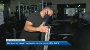 Gym owners from Newmarket and Aurora call on Ontario government to let them reopen (02:12)