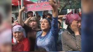 MPs to vote on whether to declare Chinese abuses against Uyghur Muslims a genocide (03:54)