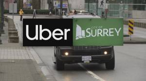 Judge orders city of Surrey to stop ticketing Uber drivers