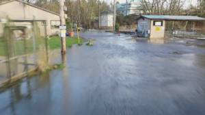 Metro Vancouver hatchery cleaning up from flooding