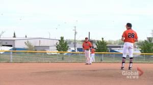 Saskatchewan Premier Baseball League teams excited to play full season again (01:43)