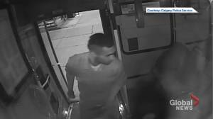 Calgary police release video of sexual assault suspect (00:31)