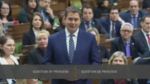The factors likely behind Scheer resigning as Conservative leader