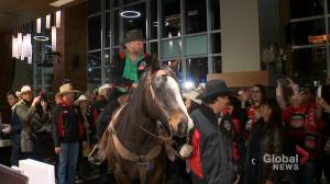 Tuffy arrives at Calgary hotel as part of popular Grey Cup tradition