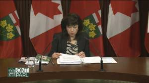 Coronavirus: Ontario auditor general says COVID-19 response 'hampered' by command, advisory structure (05:21)