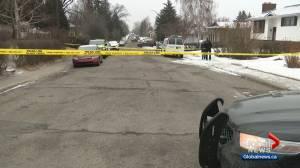 Calgary police investigating fatal shooting in Pineridge