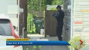 Trial begins for 2 men accused of murdering, sexually assaulting Toronto nurse (02:04)