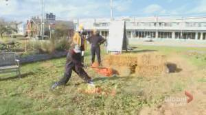 Common Roots hosts 9th annual pumpkin smash to end growing season (01:34)