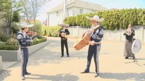 Mariachi band performs for B.C. seniors on Cinco de Mayo