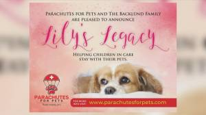 Parachutes for Pets and Mikael Backlund create Lily's Legacy program (04:13)