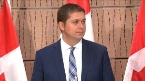 Coronavirus outbreak: Scheer says Liberals need to show spending plan during COVID-19 pandemic