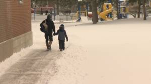 Snow storm halts return to in-class learning at some Toronto-area schools (02:09)