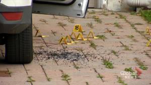 1 dead, 1 injured after brazen shooting in quiet Newmarket neighbourhood