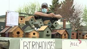 Alberta Beach man's birdhouses supporting Stollery Children's Hospital (02:33)