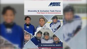 Hockey Nova Scotia's diversity and inclusion task force (05:21)