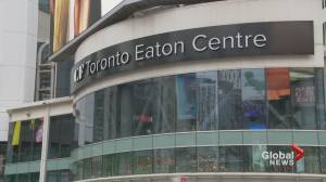 Coronavirus: Malls in Toronto, Peel Region impacted by lockdown (01:50)