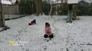 Children, dogs play in snow as areas around GTA hit with first big winter storm (03:58)