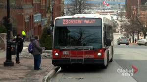 N.B. and federal government at odds over transit funding (01:43)