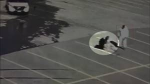 Graphic video appears to show York Regional Police officer being attacked
