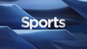 Global Lethbridge Sports Recap: Nov. 4
