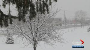 Calgary snowfall adds to already snowy fall