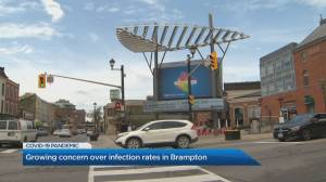 One section of Brampton has a 19 per cent positivity rate for COVID-19 (01:55)