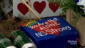 Outrage growing over decision to hold review into April N.S. shooting