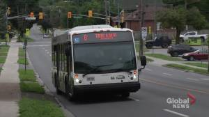 Transit still up for discussion at Peterborough council (02:08)