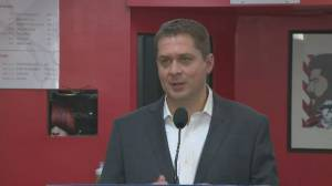Scheer promises cuts of $1.5 billion annually to balance budget