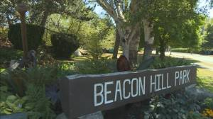 Missing teen badly hurt in Beacon Hill Park attack (02:05)