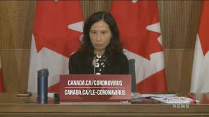 Coronavirus: Postal code 'really matters' when it comes to public health, Tam says (01:03)