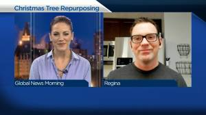 Repurposing your Christmas tree and other ways to enhance the backyard (03:56)